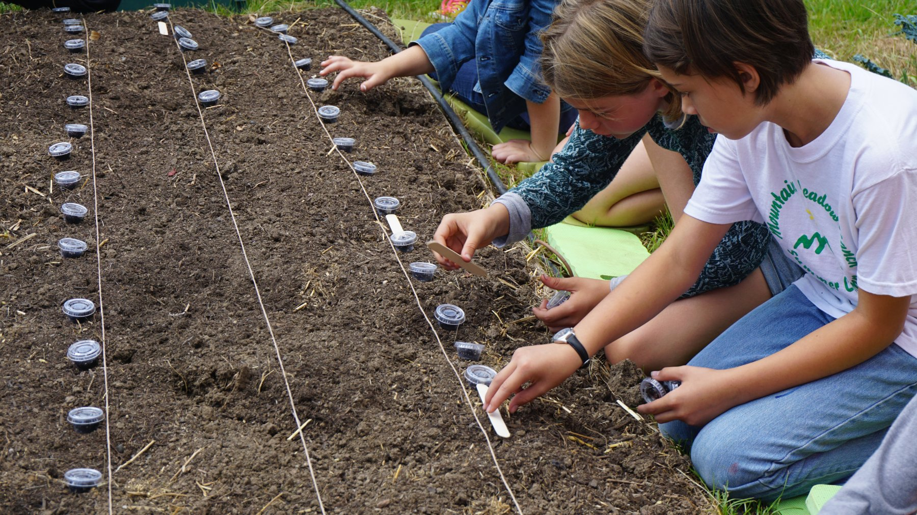 Farm measuring and planting