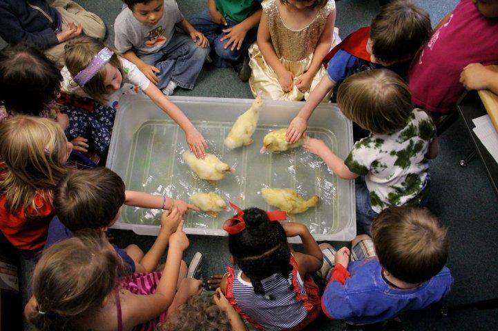 ES kids with ducks