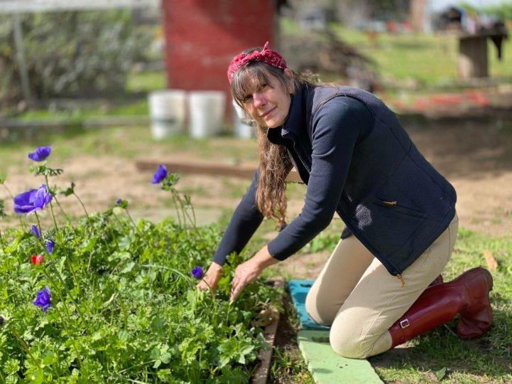 Farm Barbara gardening