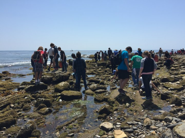 HS Students ocean outdoor exploration