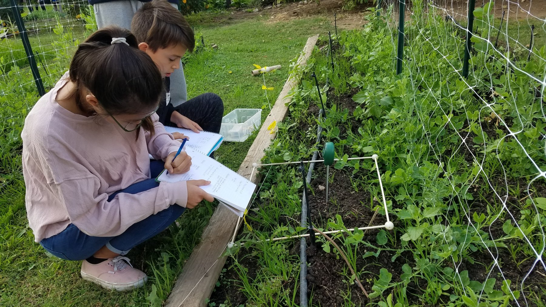 MS Students at farm writing observations